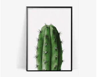cactus botanical poster print/Cactus print/plant print/herb cacuts poster print/botanical print/cactus photohraphy print/monstera pineapple
