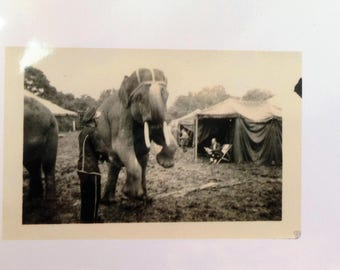 Rice Brothers Circus 1937 - Smitty and Elephant