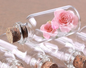 20 Pcs (10 mL) Mini Glass Bottle Vials