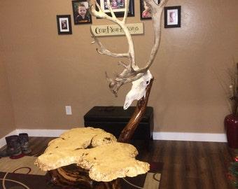 Burl End Table Skull Lamp, Burl wood table, Cabin decor, End Table, Log Table, Tree Stump Table