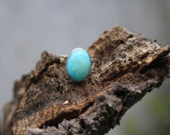 Sterling Silver Howlite Turquoise Ring