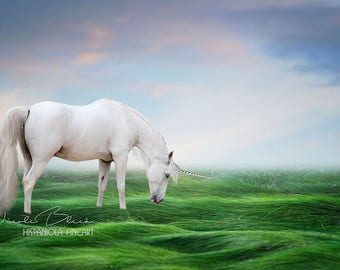 Unicorn, Dreamy, Fantasy, digitaler Backdrop, download, Photo, Manipulation, Art, Print, Sky, Grass, Photoshop, Fairy tale, Photo,Composing