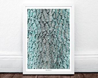 BARK I, Moss, Modern Large Print, Wall Prints Art Modern, Large Minimalist Art, Wall Print, Nature Wall Poster, Fine Art