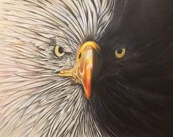 Majestic Eagle in Warm Tones (Colored Pencil)
