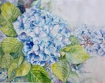 Original Watercolor Painting, Hydrangeas