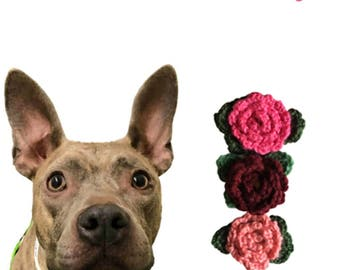 Handmade crocheted flowers for your dogs collar- Fundraiser