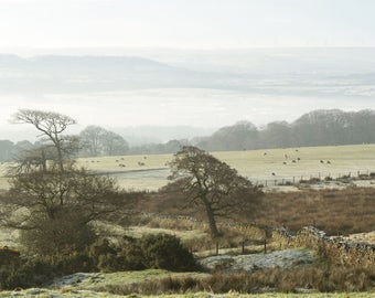 Morning Mist Over Pendle Valley