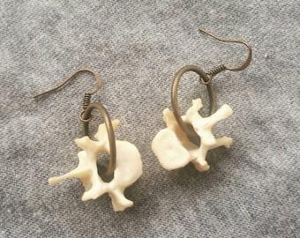 Skunk Vertebrae Dangle Earrings