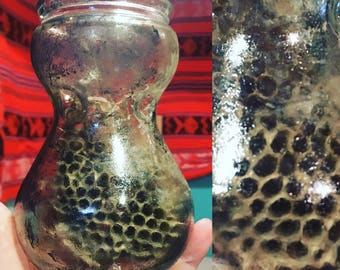 Wasp Nest in a Jar