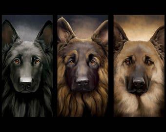 German shepherd all colors print on canvas
