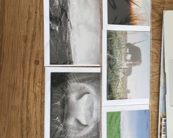 British Countryside Set of 5 Post Cards