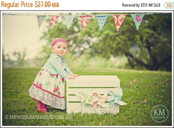 Entire Shop On SALE Pink, Aqua and Red Bunting Flags, Designer's Choice Valentine's Themed Photography Prop, 7 Large Flags, Fabric Bunting.