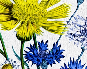 "Aster Flowers, wild flowers, asters, yellow, blue, Large Giclee Print, floral digital painting 'Asters"" by Kathy Morton Stanion  EBSQ"