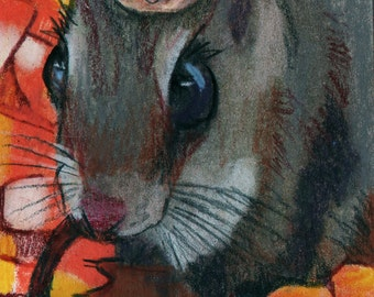 original art  aceo drawing chipmunk with walnut hat in candy corn fall humor