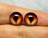 Nautilus irises 12mm SM color Brown