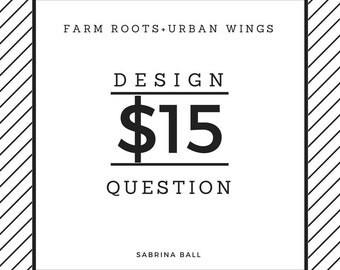 15 Dollar Design Question, Home Styling Advice, Design Consultation, eDesign Service, Interior Decorating