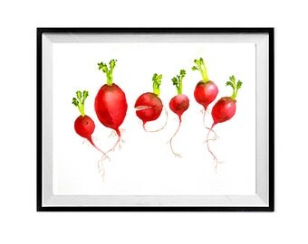 Radishes art Print Watercolor painting Vegetable garden botanical art Red artwork red Cook gardener Gift Kitchen wall art K