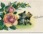 Adorable puppy dogs, roses vintage postcard, Felicidades, Spanish postcard