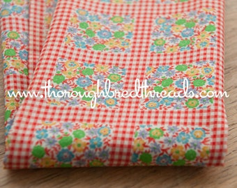 Flowers and Gingham- Vintage Fabric Juvenile Novelty Red Geometric