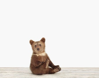 Animal Nursery Art Print. Bear Cub. Animal Nursery Decor. Baby Animal Photo.