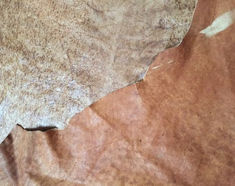 An amazingly unique distressed double sided leather - in tones of toffee and cognac , a full 8 plus square foot hide