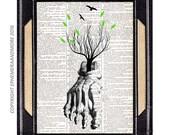 Anatomical FOOT art print wall decor human anatomy bones Orthopedic illustration vintage dictionary book page Lone Tree medical doctor 8x10