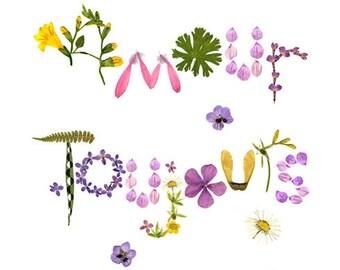 Herbarium botanical love card, Romantic pressed flower floral card, Wedding announcement card, Flower wedding invitations, Flower stationery