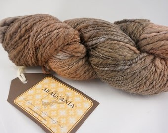 deSTASH: Araucania hand dyed knitting yarn Liwen in shades of brown rust taupe