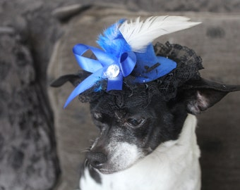 Cute blue color  hat with  white and blue   feather and blue   color bow  for dog or cat