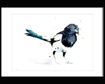LIMITED Edition print 0f painting black and white bird watercolour  'Magpie' wildlife art hand signed, illustration, animal art