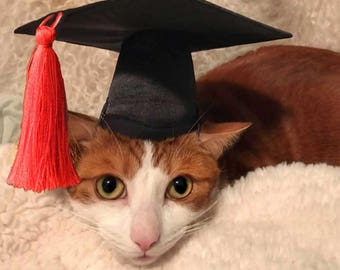 "Graduation Cap for small dogs and cats with 6-11"" collar size (red tassel) - Dog Graduation Hat"