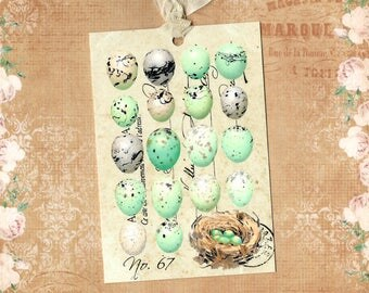 Tags, Bird Eggs, Gift Tags, Nature, Bird Specimen, Eggs, Party Favors, Bird Lover