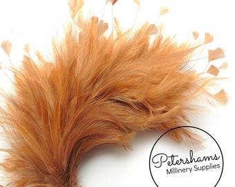 Large Hackle & Stripped Coque Hat Mount for Millinery Fascinator Trimming - Chestnut Brown