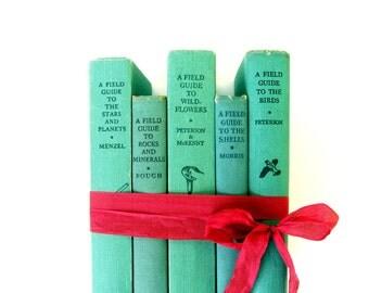 Field Guide Book Stack, Aqua Book Decor, Mint Green Book Stack, Hardback Field Guides. Peterson Field Guide Book Stack, Turquioise Books