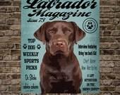 Labrador Magazine