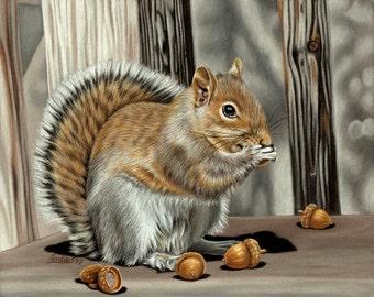 "SQUIRREL 2 woodland animal rodent painting Sandrine Curtiss ORIGINAL Art 8x10"""