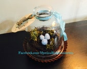 Petite Vintage Glass Cloche with Bird nest, moss, eggs and skeleton key