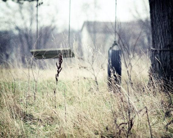 Country Landscape Photograph, Tire Swings, Landscape Photography, Country Life, Farmhouse Decor, Farmhouse Swings