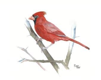ORIGINAL Watercolor Bird Painting / Northern Cardinal