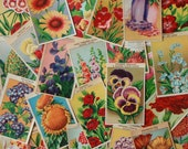 72 Labels French Flowers Seed Packets. Vintage French botanical prints of flowers NOT a digital collage sheet.