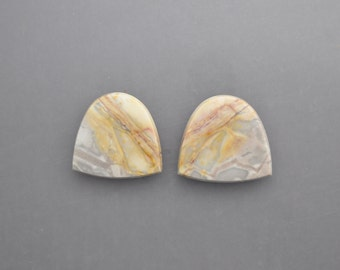 Willow Creek Jasper Cabochon Pair