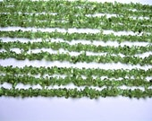 Green Apatite gemstone chip stone - A quality - 36 inch strand  - 3mm to 5mm - PSC325