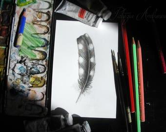 Handpainted, Original 4x6, Watercolour, Feather Study No.35 . NOT A PRINT , woodpecker , Original Painting, fine art-