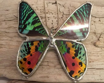 butterfly jewelry, handmade real butterfly pendant, real butterfly jewelry, butterfly necklace, real moth pendant, sunset moth Pendant