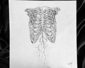 STUDIO SALE - Original Anitomical Sketch - 8x8 Graphite Art