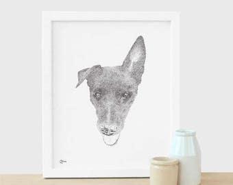 Custom Pet Illustration Bespoke original ink drawing. Pet Portrait