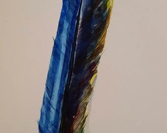 Macaw I, large blue and yellow feather, nature inspired, bird art, original watercolor painting, professional artist, Michigan artist