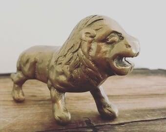 Little brass lion