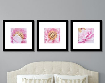 Peony Photo Set of 3 prints-Nature Photography, Pink Peony Photography, Affordable Wall Art, Gallery Wall, Square Format Print, Botanic Art