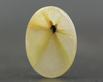 Beautiful Gold Star Rutilated, Rutile Quartz Healing Stone, Birthstone Jewelry Collectible Gift Ideas, Unique Rocks, Rare Gems (CA7300)